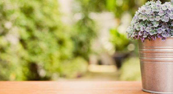 Faça você mesmo um jardim vertical em seu apartamento